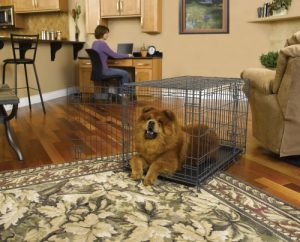 MidWest Select Triple-Door Dog Crate