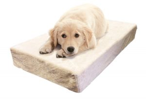 Milliard Premium Orthopedic Pet Bed