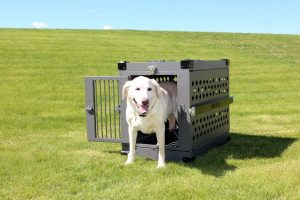 Foldable Heavy Duty Dog Crate