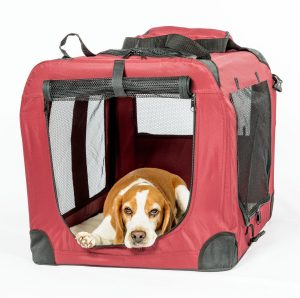 Fold-a-Crate by 2Pet