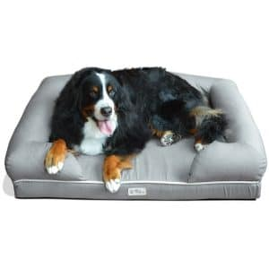 PetFusion Ultimate Dog Bed & Lounge. Premium Edition with Solid Memory Foam