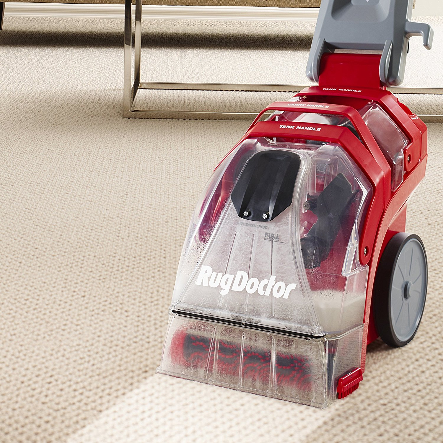 The 10 Best Carpet Cleaners for Pets in