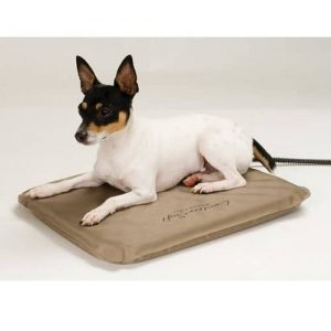 K&H Manufacturing Lectro-Soft Outdoor Heated Bed with a Dog on It