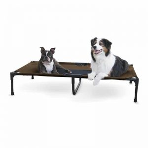 Indestructible Dog Beds
