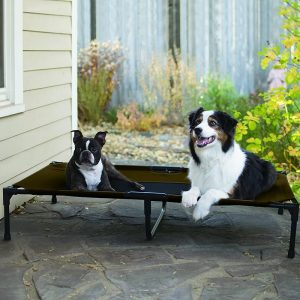 K&H Manufacturing Original Pet Cot with Dogs Outdoors
