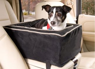 Car console seat for dog