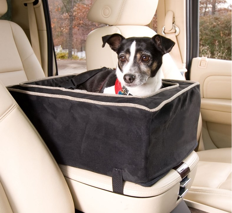 The Best Dog Car Seats in 2019 | Dogs Recommend