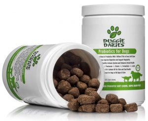 Doggie Dailies Probiotics for Dogs