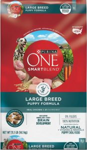 Purina One large breed puppy formula