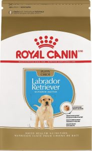 Royal Canin Labrador Retriever puppy food