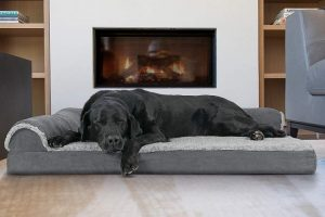 Furhaven Pet Dog Bed | Deluxe Chaise L-Shaped Lounge Sofa Pet Bed