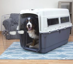 SportPet Designs Plastic Kennels Rolling Plastic Travel Dog Crate