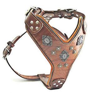 "Bestia ""Aztec"" Big Dog Leather Harness"