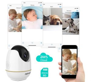 Cameras for Checking on Your Cats or Dogs