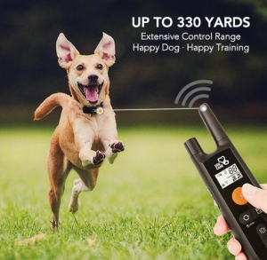 Rechargeable Dog Training Collar