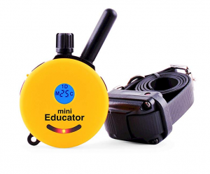 Mini Educator E-Collar