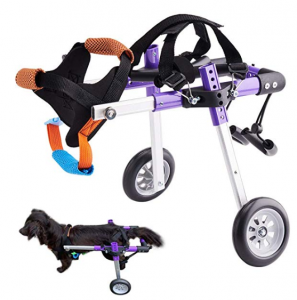 HiHydro 6 Types Cart Pet Wheelchair