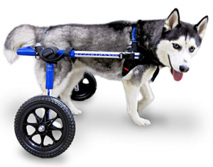 Walkin' Wheels Vet Approved Wheelchair