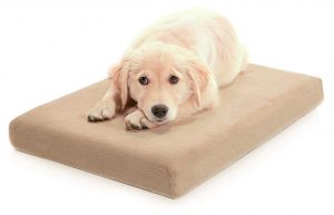 Milliard Orthopedic Dog Bed