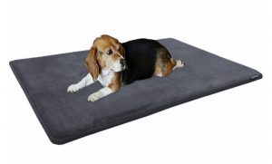 Dogbed4less Premium Gel-Infused Memory Foam Pet Mat for Medium to Extra Large Dogs