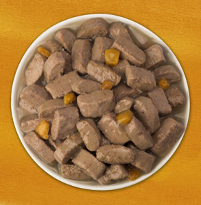 Kibbles of Wet Dog Food in A Dog Plate