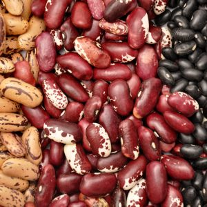 Close Up Of Three Beans Types