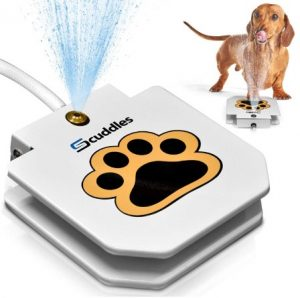 Scuddles Paw Petal Activated Dog Water Sprinkler Outdoor Automatic Water Dog Fountain for Big and Small Dogs