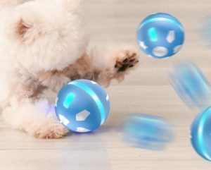 Wicked Ball Fun Gift for Cats & Dogs