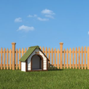 Dog House Near Wooden Fence