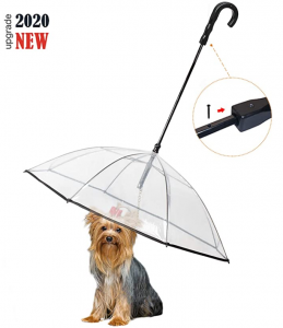 Enjoying Pet Umbrella