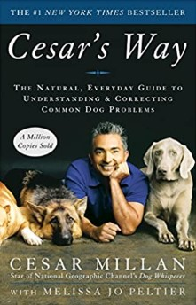 Cesar's Way: The Natural, Everyday Guide