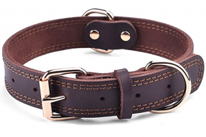 DAIHAQIKO Leather Dog Collar Genuine
