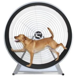 GOPET CS6020 INDOOR/OUTDOOR TREADWHEEL FOR MEDIUM AND LARGE DOGS (SIMILAR TO TREADMILL)