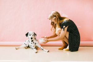 white and black dalmatian dog sitting in front of woman near