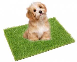 ECO MATRIX Artificial Grass