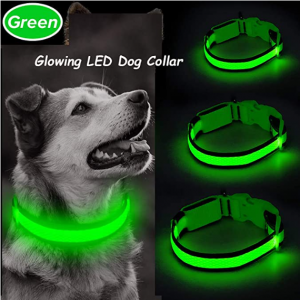 Ezier USB Rechargeable Glow in The Dark Dog Collar - Walking Lights Dog Collar