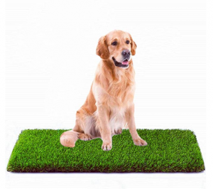 MTBRO Artificial Grass, Professional Dog Grass
