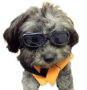 Enjoying Dog Goggles - Small Dog Sunglasses Waterproof Windproof UV Protection for Doggy Puppy Cat