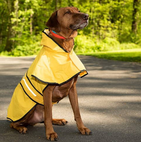 Fashion Pet Dog Raincoat For Small Dogs