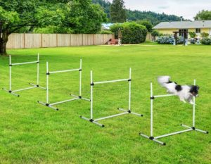 PawHut 4 Piece Adjustable Dog Jump Bar Agility Training Equipment with Carrying Case