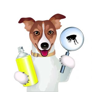 The Best Flea Spray for House for Pets