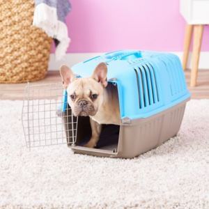 MidWest Spree Plastic Dog & Cat Kennel