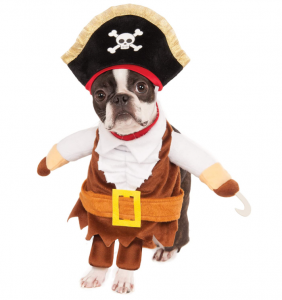 rubies party supplies pirate costume